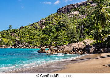 fantástico, anse, principal, praia, -, ilha mahe, seychelles
