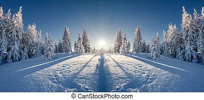 fantástico, invernal, paisaje