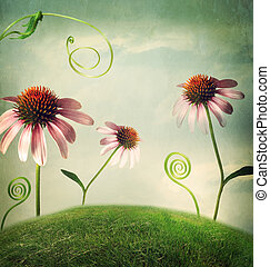 fantasía, flores, echinacea, paisaje