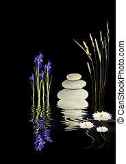fantasía, jardín zen