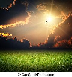 fantasi, landskap., magi, solnedgång, och, fågel, på, sky