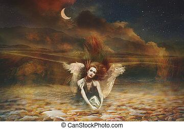 fantasia, angelo, donna, composito, foto