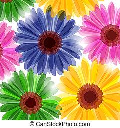 fantasia, floral, fundo
