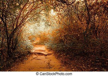 fantasia, paisagem, em, tropicais, selva, floresta, com, túnel