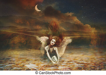 fantasie, engel, vrouw, composiet, foto