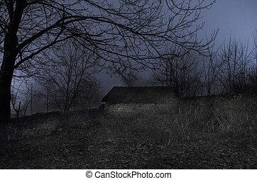 fantasma, Oscuridad, jardín, casa, bosque, Niebla, noche, paisaje