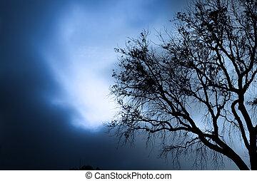 fantasmal, árbol