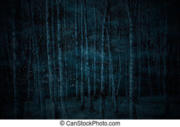 fantasmal, bosque, brumoso, noche