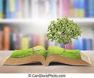 fantasme, livre, histoires