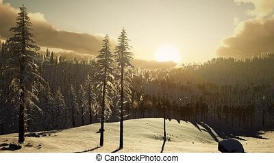 Fantastic Evening Winter Landscape - fantastic evening...