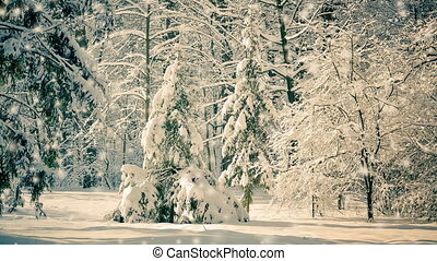 Fantastic Fairytale Magical Landscape View Christmas Tree...