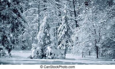 Fantastic Fairytale Magical Landscape View Christmas Tree Forest Park in Winter on Sunny Day During a Snowfall. Christmas Winter New Year Scenery background. Seamless loop, concept. White blue color