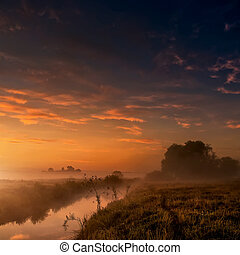 Fantastic foggy river with fresh grass in the sunlight. majestic misty sunrise with colorful clouds on the sky
