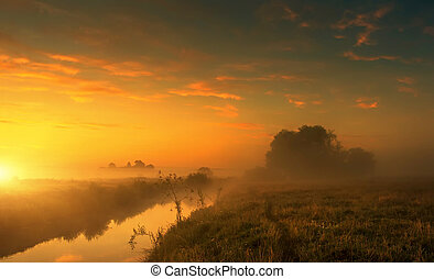 Fantastic foggy river with fresh grass in the sunlight. majestic misty sunrise with colorful clouds on the sky,