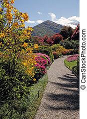 garden of Villa Carlotta on lake Como, Tremezzo, Lombardy, Italy, Europe