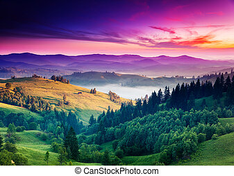 mountain - Fantastic morning mountain landscape. Overcast...