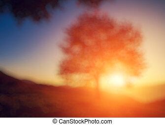 Natural blurred background - Fantastic morning scene. Red ...