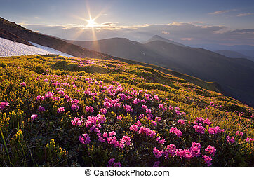 Fantastic sunset in the mountains - Beautiful summer...