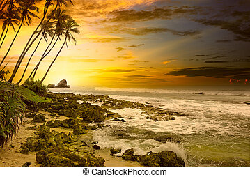 Fantastic sunset on the ocean