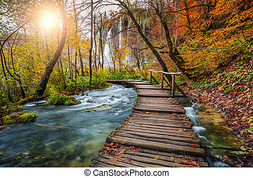 Fantastic tourist pathway in colorful autumn forest, Plitvice lakes, Croatia