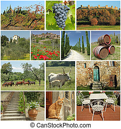 fantastic tuscan countryside collage