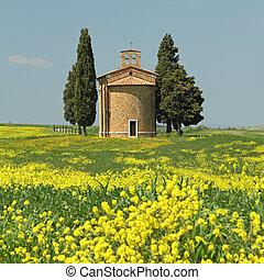 fantastic tuscan landscape in spring
