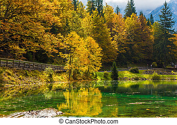 Fantastically beautiful autumn forests are reflected in the...