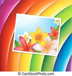 fantastico, sfondo colore, con, fiori, scheda