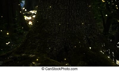 Fantasy firefly lights in the magical forest