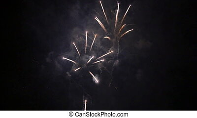 Fantasy Fireworks Rockets at Night