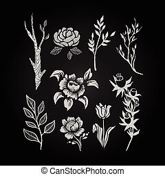 Fantasy Hand Drawn Flower and Plant Set. Vector Illustration.