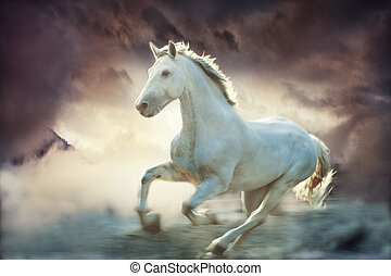 white running horse, sky fantasy background, small amount of grain added