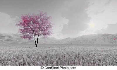 Fantasy sakura cherry tree in bloom - Black and white...