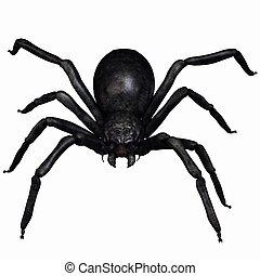3d render of a fantasy spider