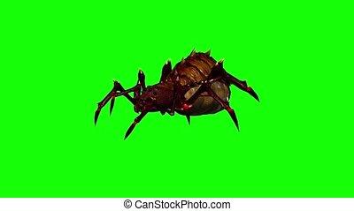 fantasy spider is running - green screen