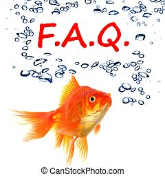 faq or frequently asked questions concept with goldfish