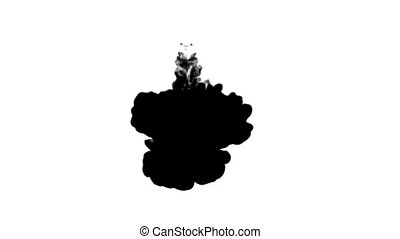 farbe, fließen, matte, tinte, gebrauch, langsam, verschlingen, schwarz, spritzen, wirbel, weißes, kanal, inky, bewegung, effects., bewegen, hintergrund, alpha, luma, wasser, mögen, rauchig, maske, rauchwolken, oder