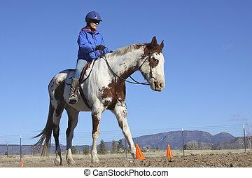 farbe, pferd ausbildung
