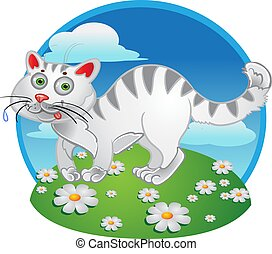 farbe, weiße katze, spaß, hintergrund