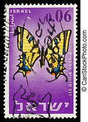 farfalla, alexanor, o, meridionale, papilio, swallowtail, maccabaeus