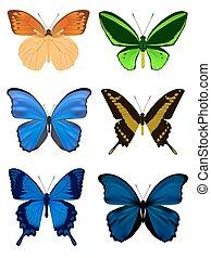 farfalla, bianco, set, isolato