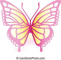 farfalla, colorato