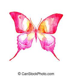 farfalla, disegno
