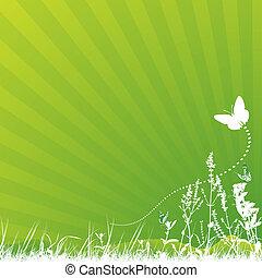 farfalla, e, prato
