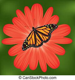 farfalla, fiore, rosso, vettore