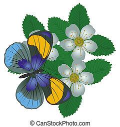 farfalla, flower-3