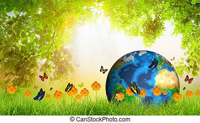 farfalla, foglia, ammobiliato, questo, primavera, (elements, verde, nasa), fresco, erba, immagine, terra