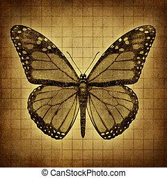 farfalla, grunge, struttura