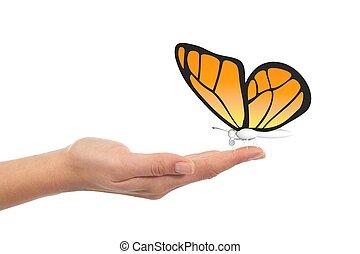 farfalla, in, donna, mano