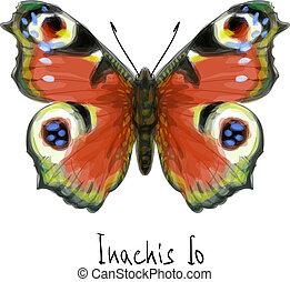 farfalla, io., inachis, acquarello, imitation.
